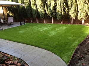 Hayward synthetic grass